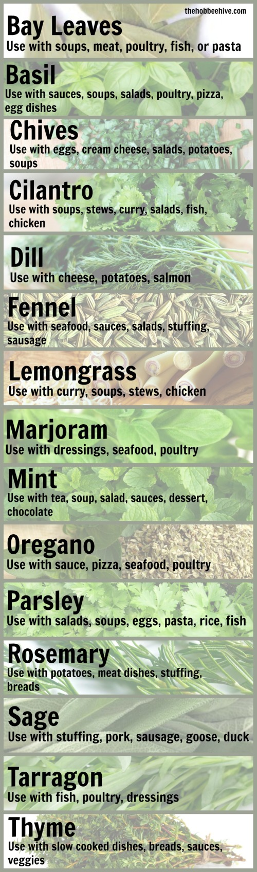 common-uses-for-common-herbs