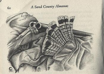 sand-county