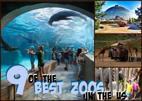 best-zoos