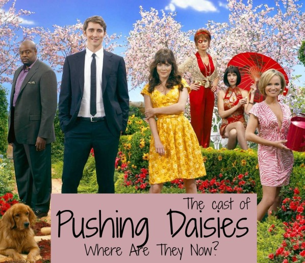 pushing-daisies-where-are-they-now