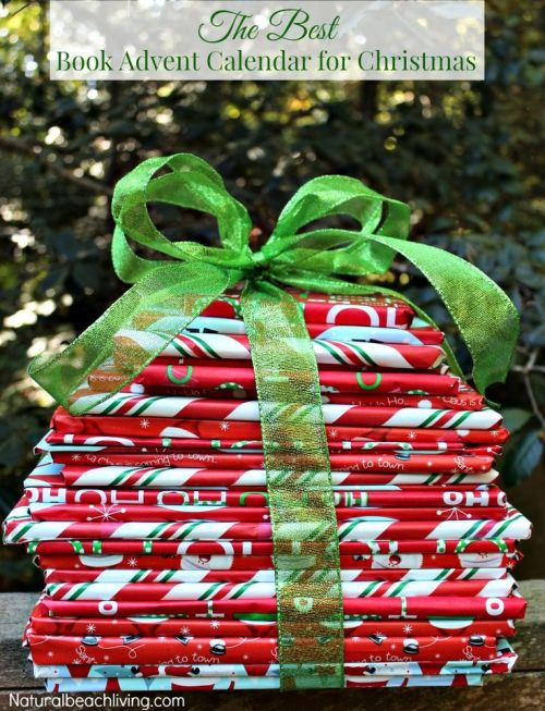 389ae810ab4d64bfdde2247ed29996e5--countdown-to-christmas-christmas-books
