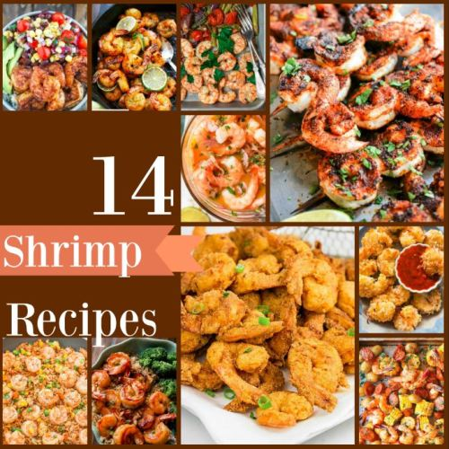 shrimp-recipes