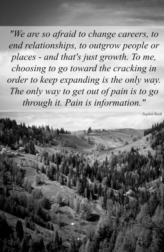 pain is information